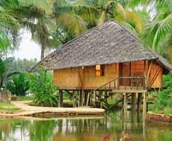 Honeymoon Tour To Thekkady